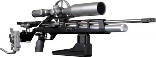 STEYR-CH-Field-Target-fit-600x222